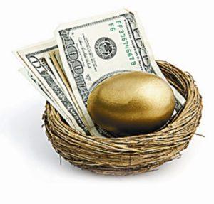 nest with golden egg & cash